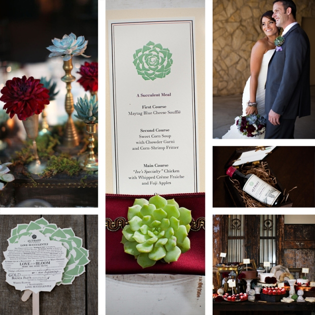 A selection of photos from a wedding using a succulent plant as their motif.